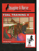 Enhanced Foal Training II