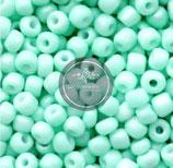 Grün Mint  (F)