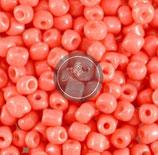 Pink Coral (K)
