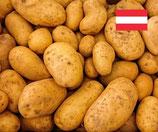 Kartoffel Ditta aus Österreich