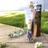 植物標本茶 ハーバリウムティー 空SORA ガラスのティーバッグ