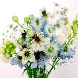 Schnittblumen Samen-Set