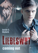 Liebeswut: Coming out (Neal Anderson Band 1)