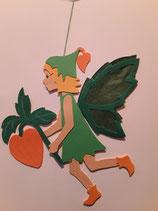 Elfe Lampionblume