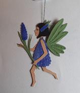 Elfe Traubenhyazinthe, blau