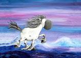 Postkarte Islandpferd