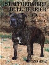 Staffordshire Bull Terrier heute