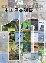 China Bird Watch 中国鸟类观察