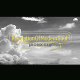 Revelation Of Modern Soul / Mixed by BRONX S.I.G