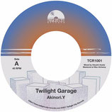 Akinori.Y / Twilight Garage  c/w Day Dreaming