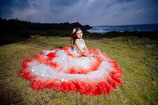 赤白 プリンセスドレス