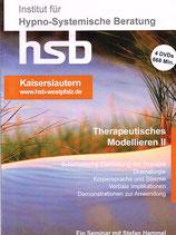 Ausbildung Therapeutisches Modellieren Teil II (2016), 4 DVDs, ca. 668 min Spielzeit