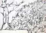 """Z14 Bleistiftzeichnung """"Feldberg I"""", 42x60 cm, 1993 signiert"""
