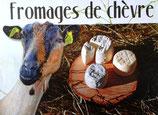 Fromage de chèvre de St Cyr