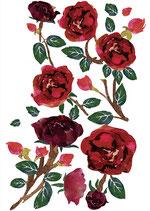 """Hinterkarte """"Rosen""""-Print, Rot"""