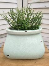 Keramiktopf Oval lindgrün