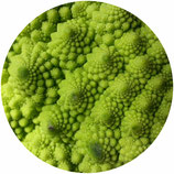 Semillas - Romanesco