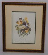 Λουλούδια & Φυτά 18  (ΚΩΔ: FP18MP2)