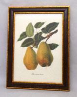 Fruit 4  (Code: F4M)