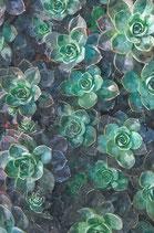 Flowers ( Code : DF9 )
