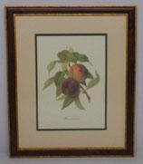 Φρούτα 8   (ΚΩΔ: F8MP2)