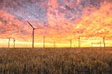 Sunset ( Code : DS13 )
