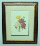 Floral & Plant 16  (Code: FP16P2)