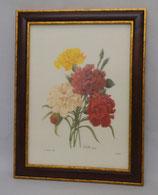 Floral & Plant 16  (Code: FP16M)