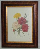 Floral & Plant 16  (Code: FP16)