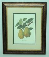 Fruit 4  (Code: F4P2)