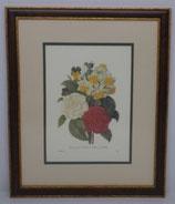 Λουλούδια & Φυτά 17  (ΚΩΔ: FP17MP2)