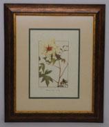 Floral & Plant 22  (Code: FP22P2)