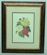 Floral & Plant 17  (Code: FP17P2)
