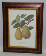 Φρούτα 4  (ΚΩΔ: F4)