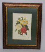 Floral & Plant 17  (Code: FP17P1)