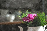 Flowers ( Code : DF11 )