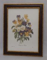 Floral & Plant 18 (Code: FP18M)