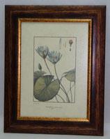 Floral & Plant 20  (Code: FP20)