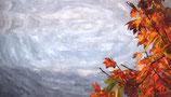 Fall / Autumn ( Code : DFA10 )