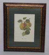 Φρούτα 6  (ΚΩΔ: F6P1)