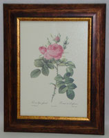 Floral & Plant 12  (Code: FP12)