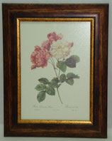 Floral & Plant 10  (Code: FP10)