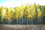 Fall / Autumn ( Code : DFA5 )