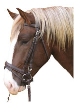 "Kerbl Bridle ""Cold blood"""