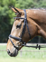 "Busse Bridle Soft ""Small Crystal"""