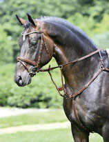 Busse Breastplate Imola