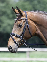 "Busse Bridle Soft ""Crystal Chain"""