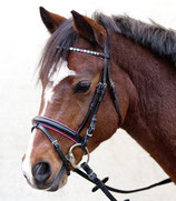 "Waldhausen Pony Bridle Sparkling ""Hearts"""