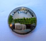 Tahquamenon Falls 18