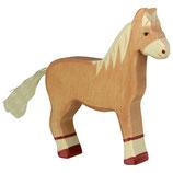 Pferd stehend hellbraun